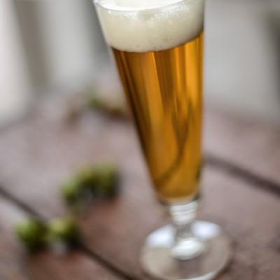Regal Pale Ale Recipe